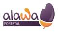 Alawa