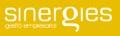 Sinergies Gestión Empresarial